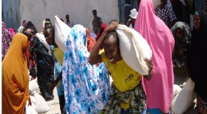 Somalia's food insecurity eases but acute malnutrition remains high